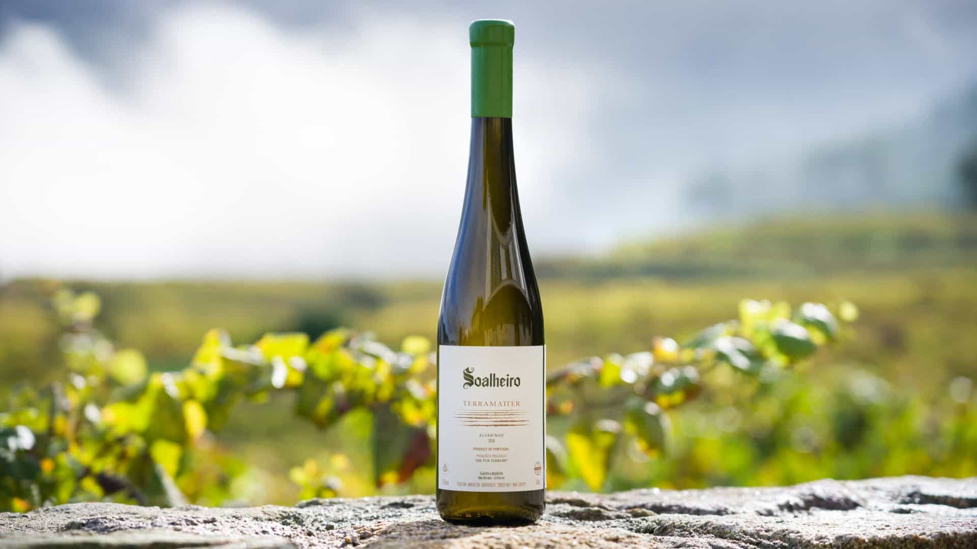Try our Alvarinho which is the tasty in Portugal